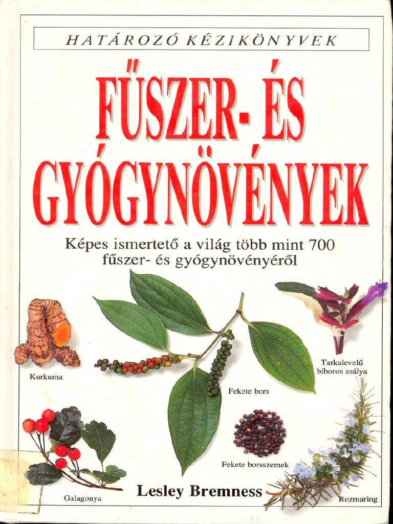 a magas vérnyomásból származó kaukázusi dioscorea tinktúrája)