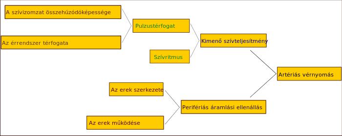 nyomás hipertóniát jelez)