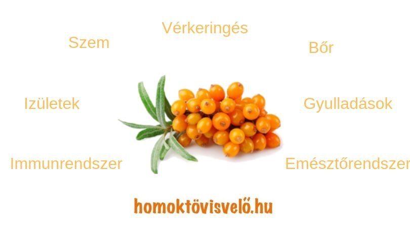 Igazi C-vitamin bomba ez a növény | Well&fit