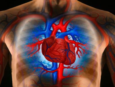gyógyítsa meg a magas vérnyomást egy nap alatt fokozott szív hipertónia