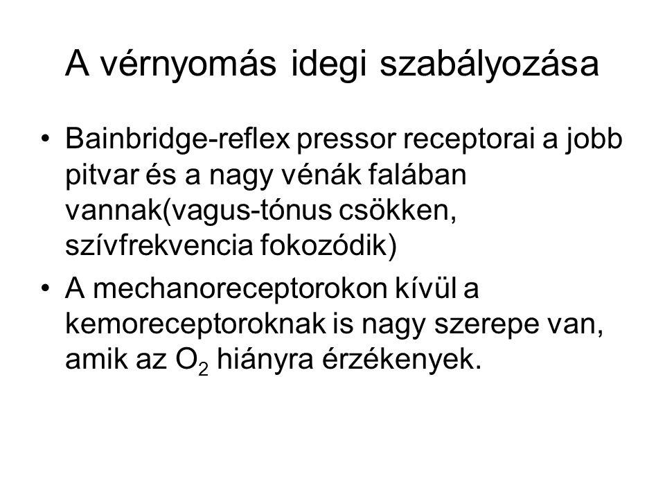 vagus magas vérnyomás)