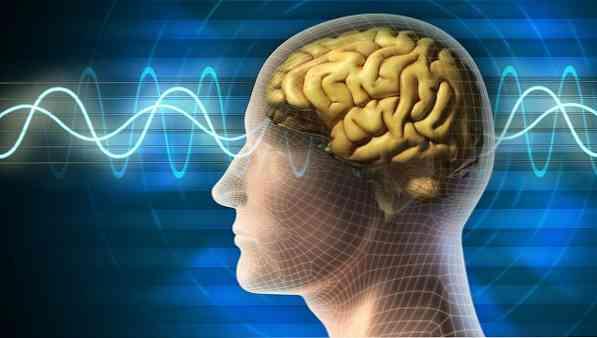 magas vérnyomás és emberi tudat)