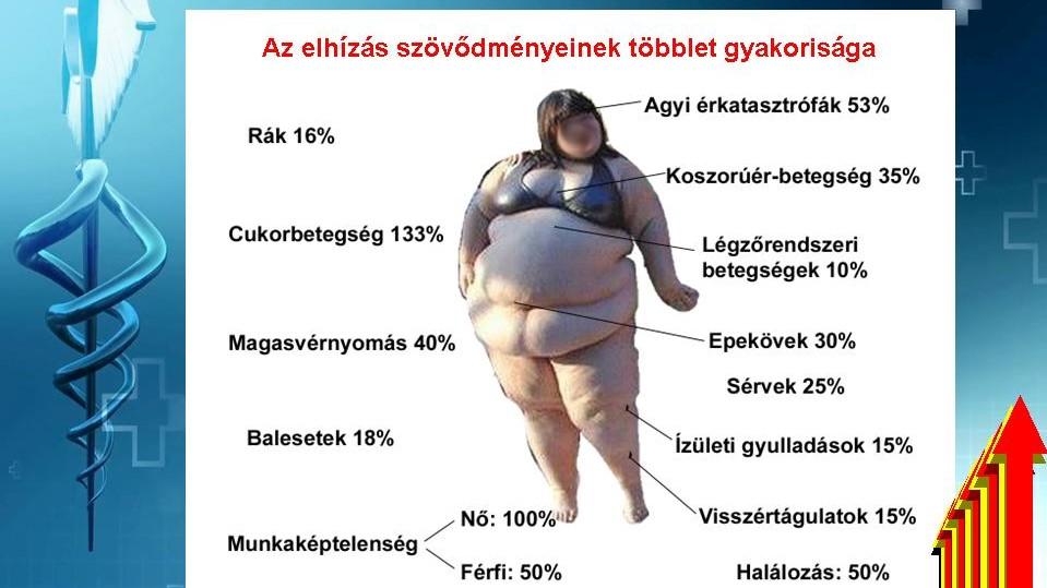 elhízás magas vérnyomás kockázatával alacsony pulzusszámú magas vérnyomás elleni gyógyszerek
