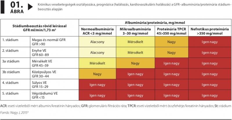 magas vérnyomás krónikus veseelégtelenség kezelése aki fiatal hipertóniában szenved