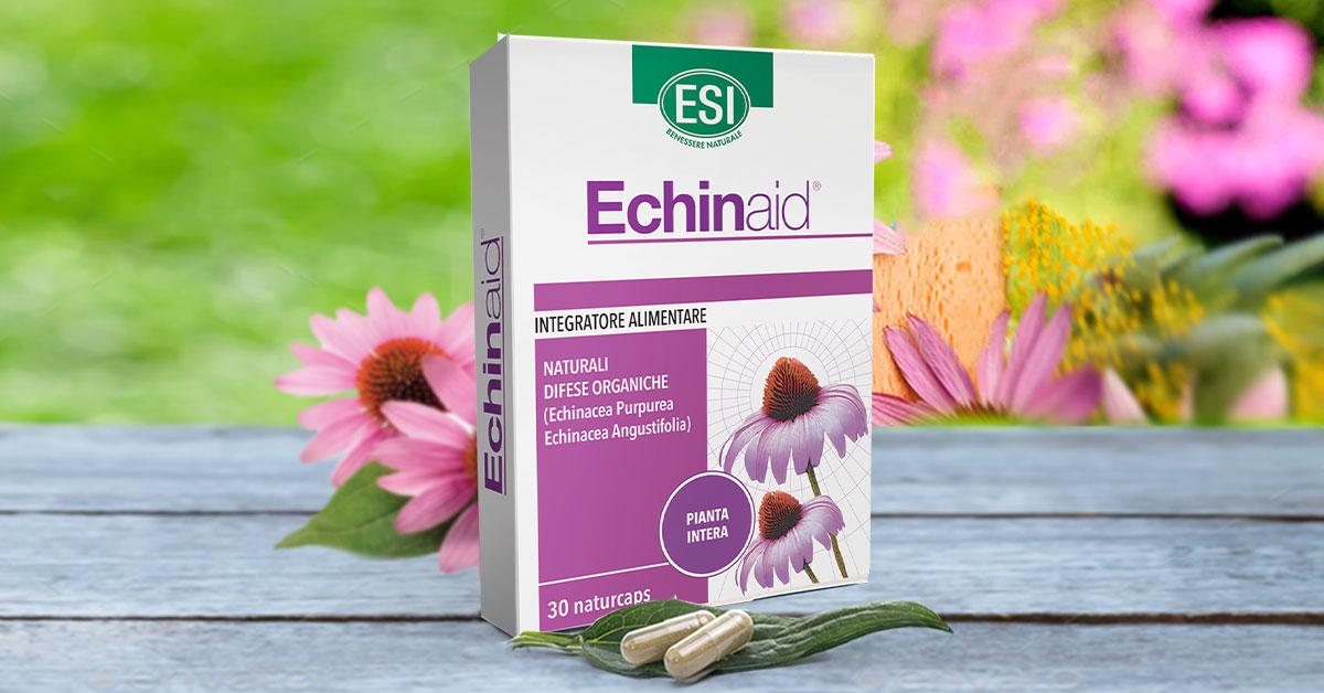 Echinacea tinktúra és magas vérnyomás