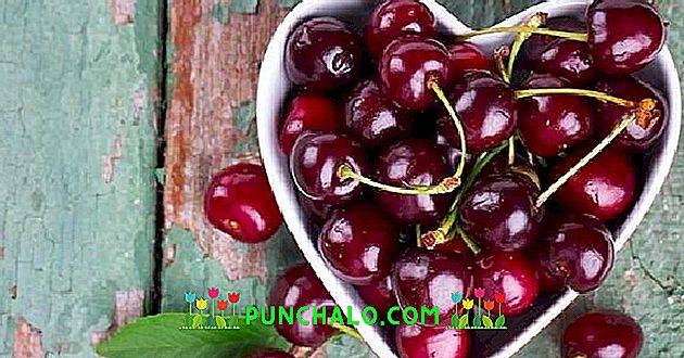 a cseresznye hasznos magas vérnyomás esetén)