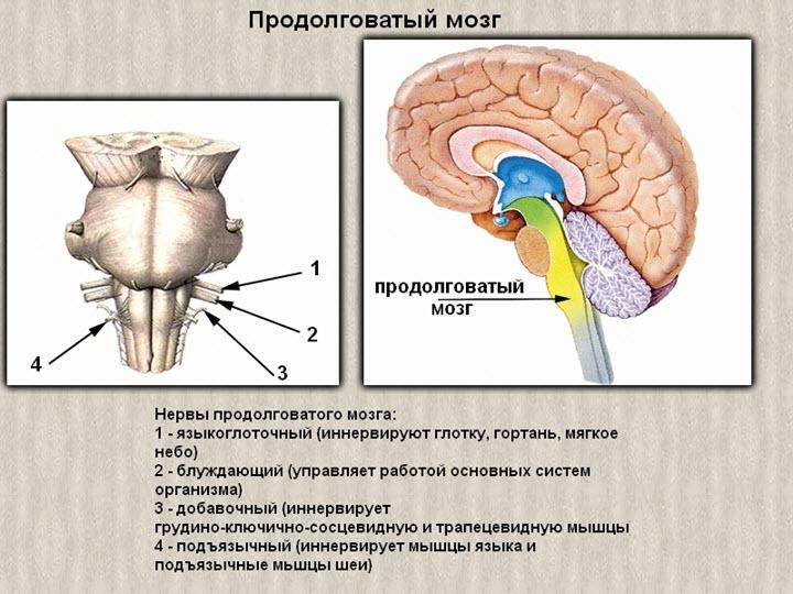 osteochondrosis magas vérnyomás)