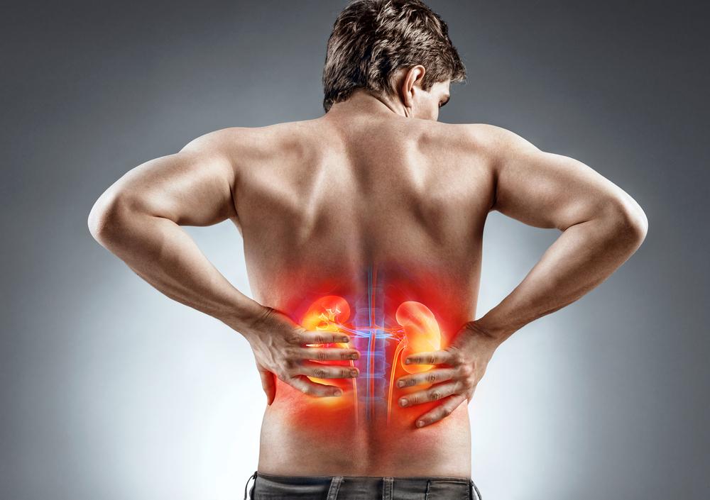 a magas vérnyomás oka lehet a vese
