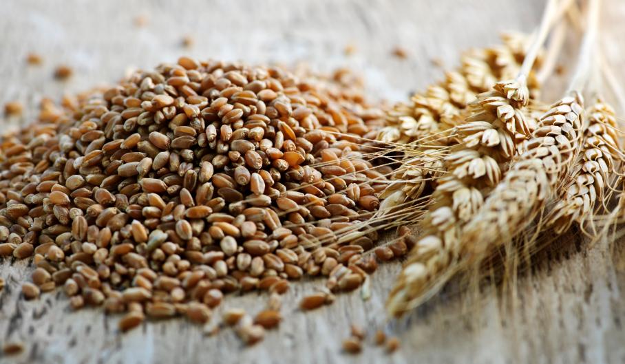 milyen gabonafélék magas vérnyomás ellen