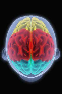 OTSZ Online - Új képalkotó módszer a magas vérnyomás okozta agykárosodás kimutatására