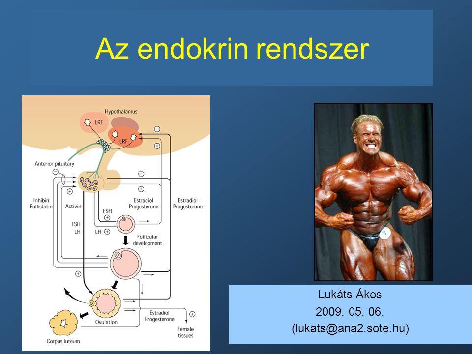 endokrin rendszer és magas vérnyomás