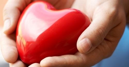 gyógynövényi szív hipertónia)