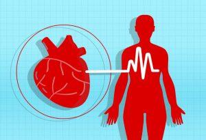 magas vérnyomású fórum sorai