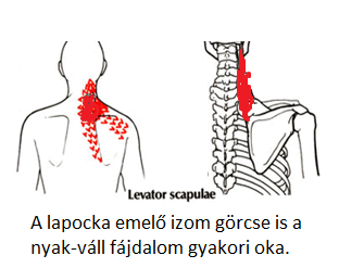 magas vérnyomás izomfájdalom)