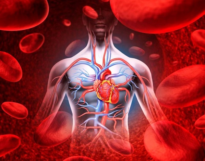 mikor és miért válik hipotenzióvá hipertónia Hogyan kezelik a 2 fokú magas vérnyomást