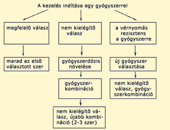 gyógyszercsoportok a magas vérnyomás kezelésében)