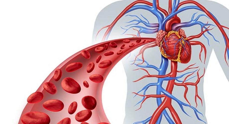 magas vérnyomás és idegek