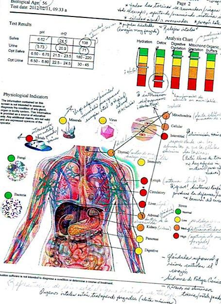 Egészségesen él, mégis magas a vérnyomása? | rezcsoinfo.hu