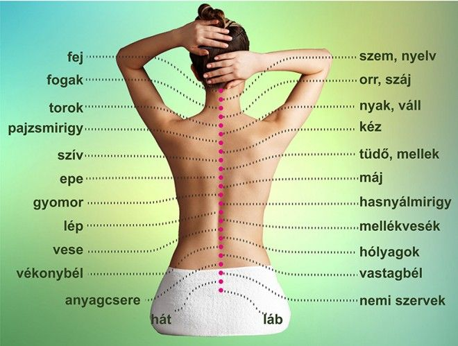 magas vérnyomás és hátfájás)